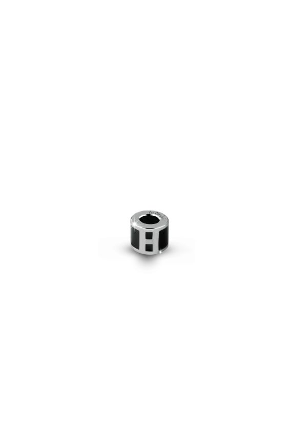 Charm Cylinder Initial H